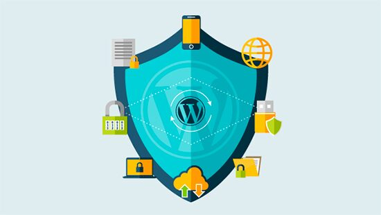 Website Security, Cookies, and CyberAttacks, Hashe Computer Solutions (Pvt) Ltd.