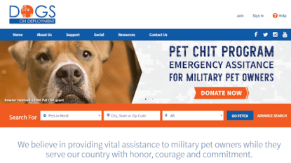 Dog breed - Online advertising