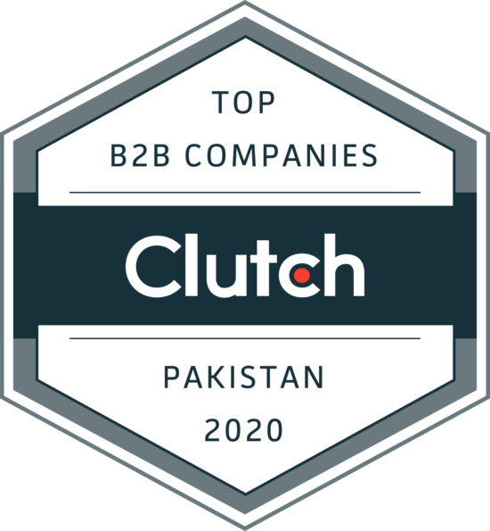 Hashe Computer Solutions Named Top B2B Company in Pakistan, Hashe Computer Solutions (Pvt) Ltd.